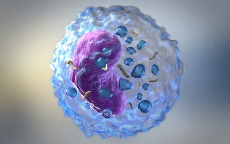 Potential Batten Biomarkers Identified Through Protein Analyses