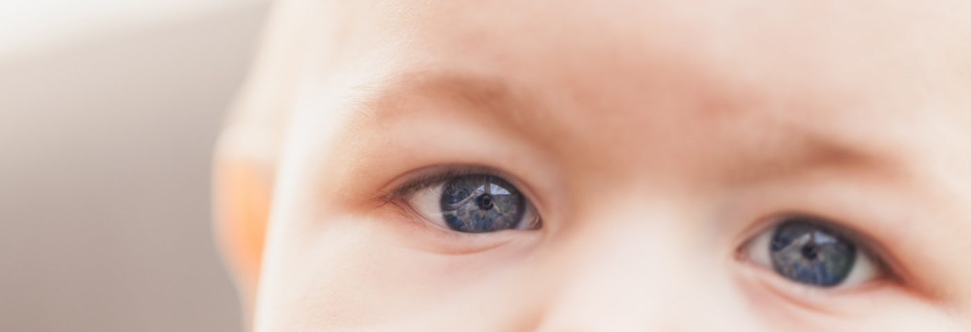 Vision Loss in Juvenile Batten May Be Due to 'Maintenance' Failure